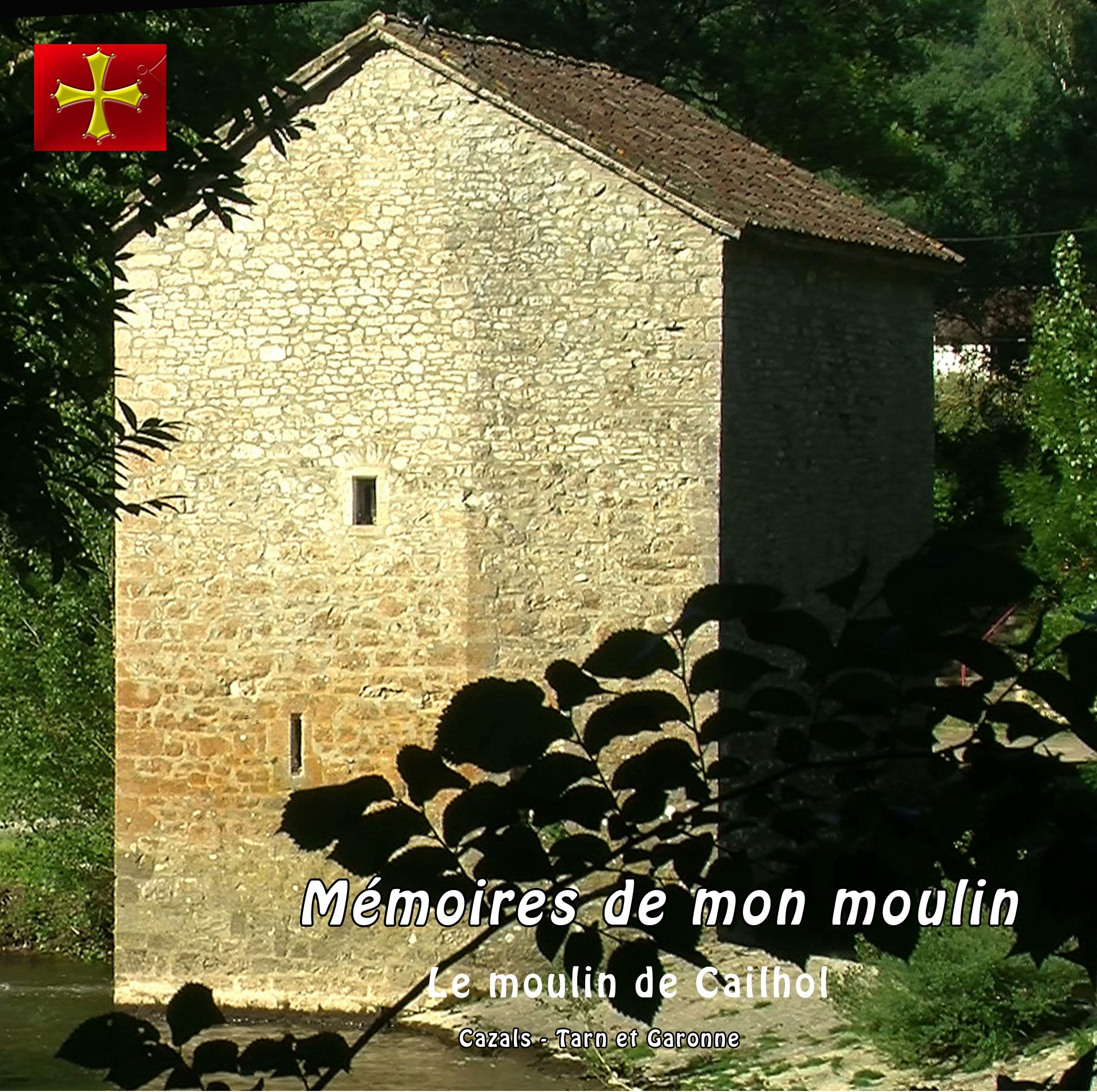 dvd mémoires de mon moulin