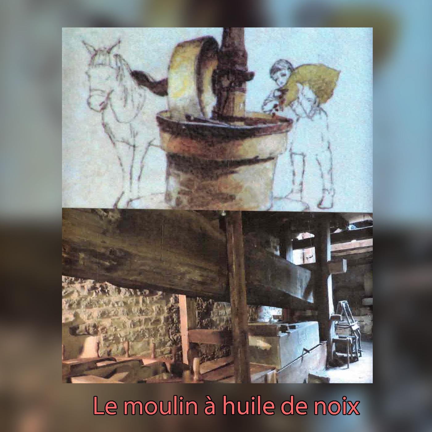 dvd--moulin-huile-noix-1